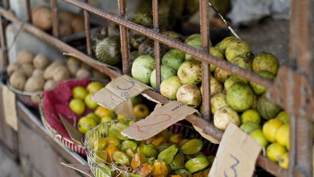 Farmers Market Fruit Stand (14ymedio)