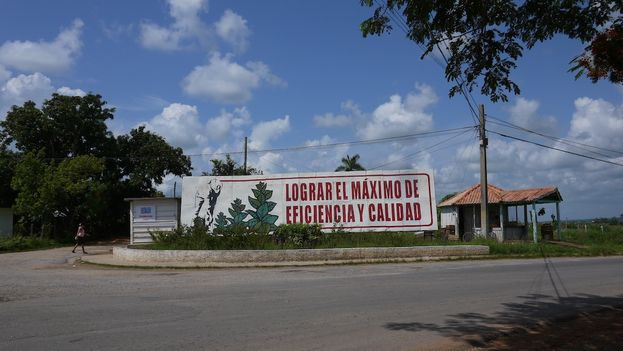 A poster invites farmers to achieve maximum efficiency and quality. (14ymedio)