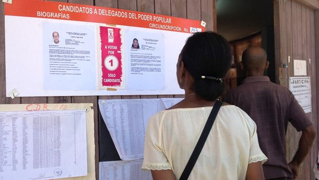 A woman looks at the biographies of the candidates before voting. (14ymedio)