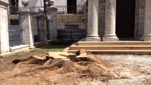 The site of the mythical ceiba tree at El Templete in Havana. (14ymedio)