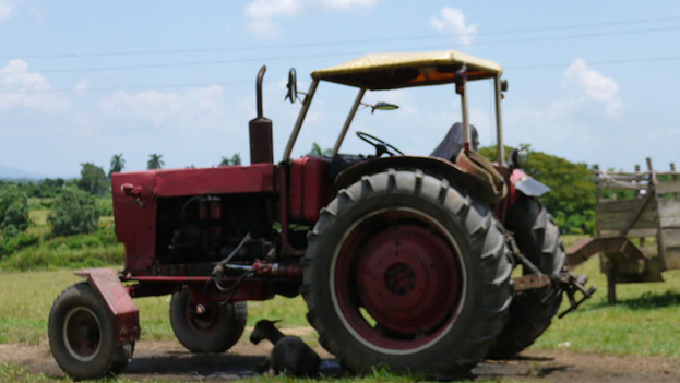 The old tractor on La Isleña farm in San Juan y Martinez, Pinar del Río. (14ymedio)