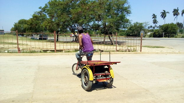 A cart driver at the El Trigal wholesale agricultural market in Havana (14ymedio)