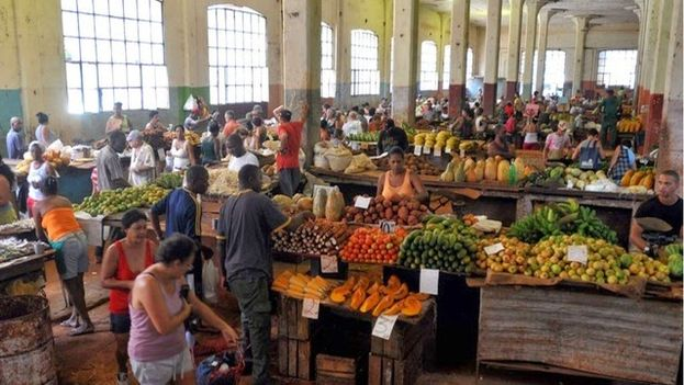 About 10 million people eat the same thing at the same time in Cuba, the few products available in the market. (EFE)