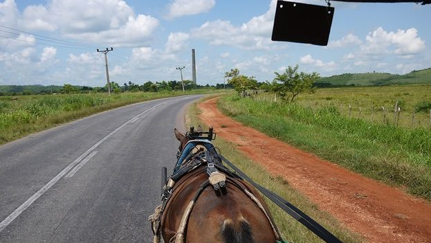 In the distance the dismantled sugar mill (14ymedio)