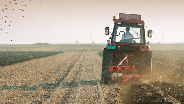 Among the goods that fall into and illegal market include parts for agricultural machinery