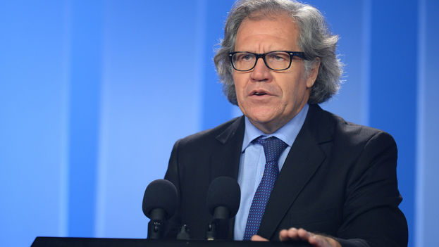 The secretary general of the Organization of American States, Luis Almagro. (OAS)