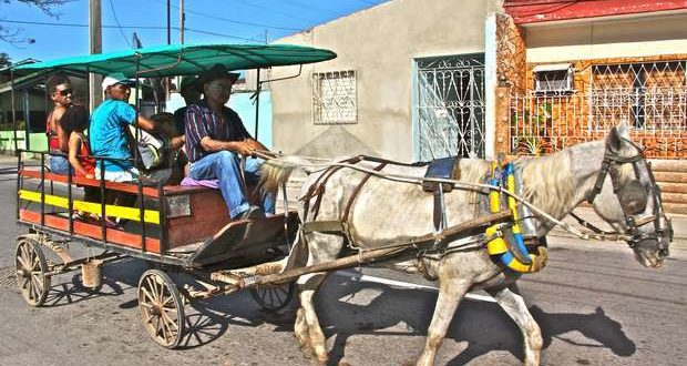 In Santa Clara, as in the other cities and villages in the interior of the island, the horse and cart has become one of the main means of transport. Taken from Carol Kieker's blog.
